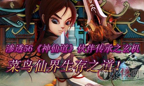浙江十一选五开奖结果 5